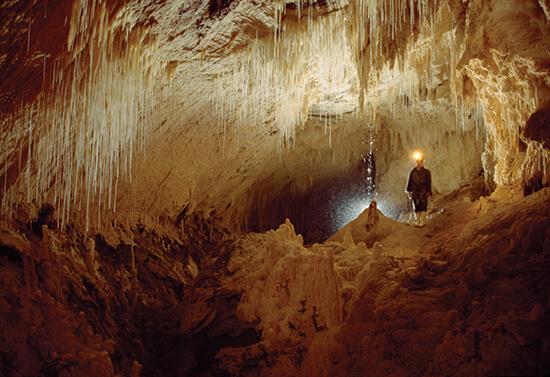 Waitomo Caves (Image: Tourism New Zealand)