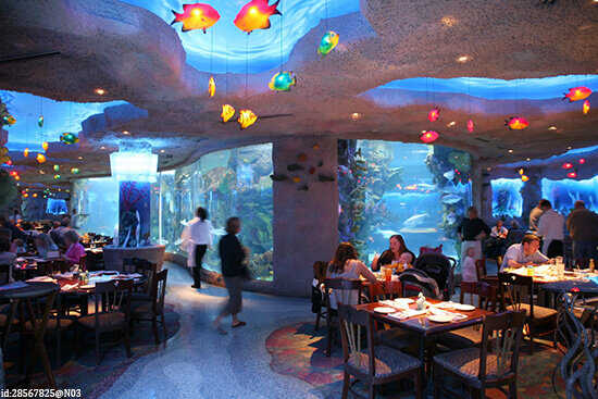 The Aquarium Restaurant in Nashville
