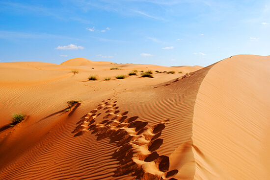 The Empty Quarter, Abu Dhabi