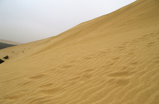 Sand dunes in Cape Reinga, New Zealand