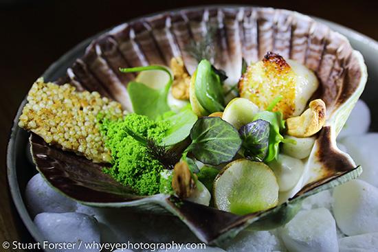 SF_Food_Photography_002