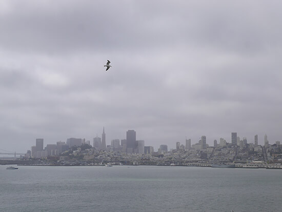 The San Francisco skyline from Alcatraz (image: Alexandra Gregg)