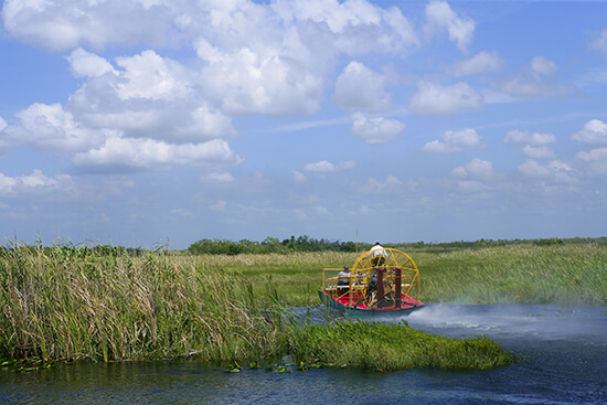 Airboat at the Everglades National Park