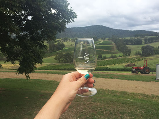 Wine at Mount View Estate