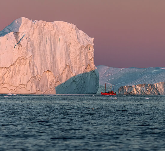 Look for polar bears by boat in Greenland