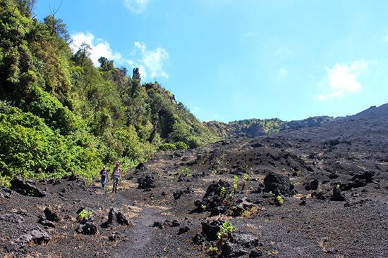 Pacaya volcano (image: Claus Gurumeta)