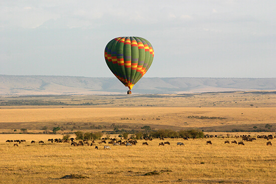 Hot-air balloon over the Masai Mara