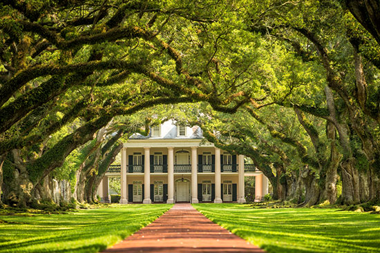The Oak Alley Plantation in Lousiana