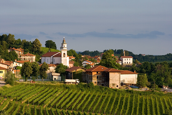 The Slovenian wine region of Goriska Brda