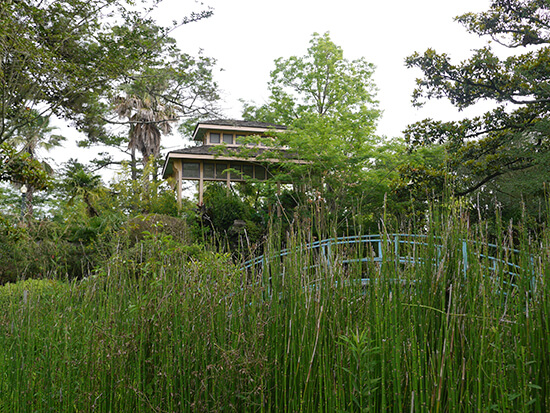 Japanese-inspired gardens (image: Alexandra Gregg)