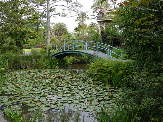 The pond at Houmas House (image: Alexandra Gregg)