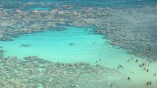 Snorkellers at Hanauma Bay (image: Phil Murray)