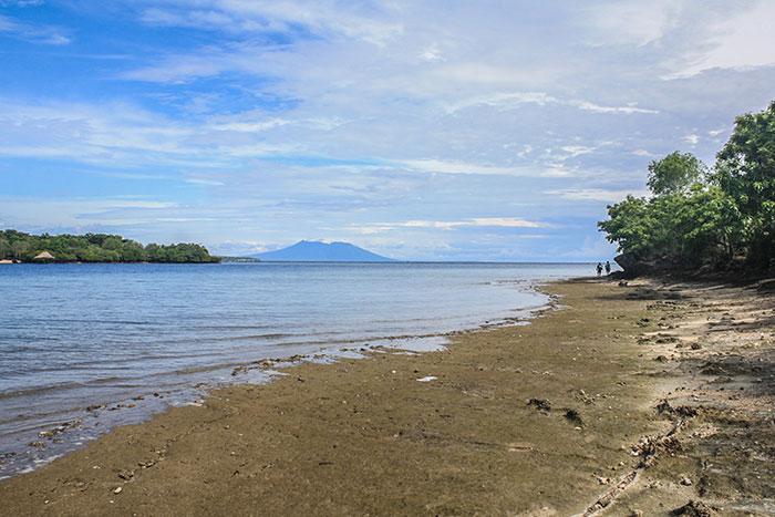 West Bali National Park Richard Collett